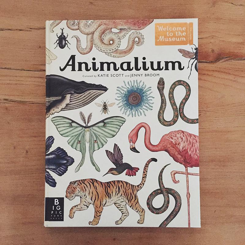 animalium_baarn00